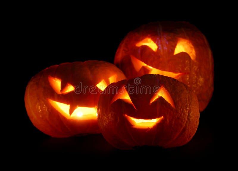 Calabazas de Halloween en negro imagen de archivo