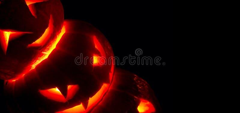 Calabazas de Halloween en negro imágenes de archivo libres de regalías