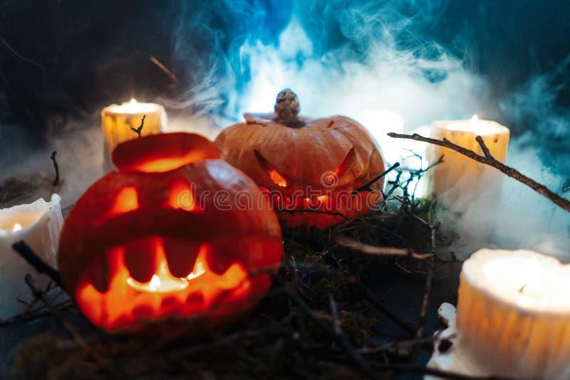 Calabazas de Halloween en un bosque fantasmagórico en la noche imagenes de archivo