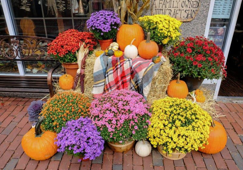 Calabazas de Halloween y flores estacionales en una orilla en Salem, mA, los E.E.U.U. fotografía de archivo libre de regalías