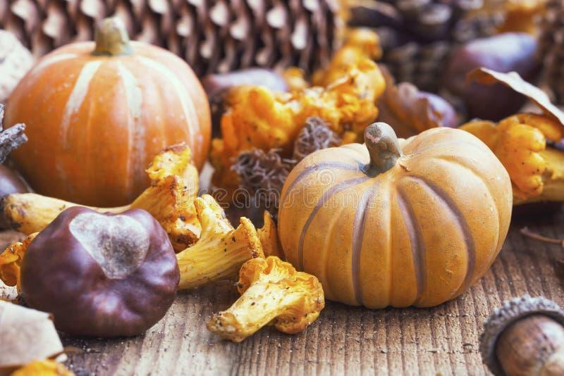 Calabazas decorativas del otoño con las setas, castañas en b de madera imagenes de archivo