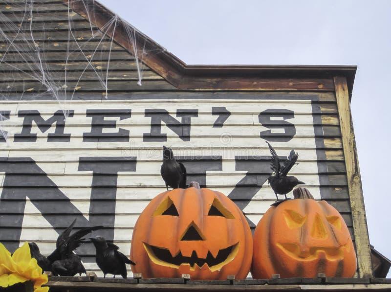 Calabazas decorativas durante el día de fiesta de Halloween imagen de archivo