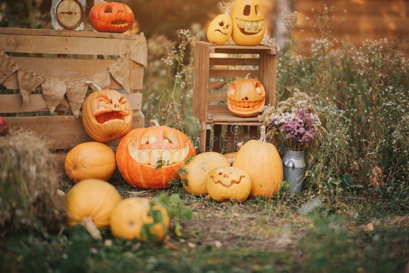 Calabazas del fantasma en Halloween ead Jack en un fondo del otoño Decoraciones al aire libre del día de fiesta fotografía de archivo libre de regalías