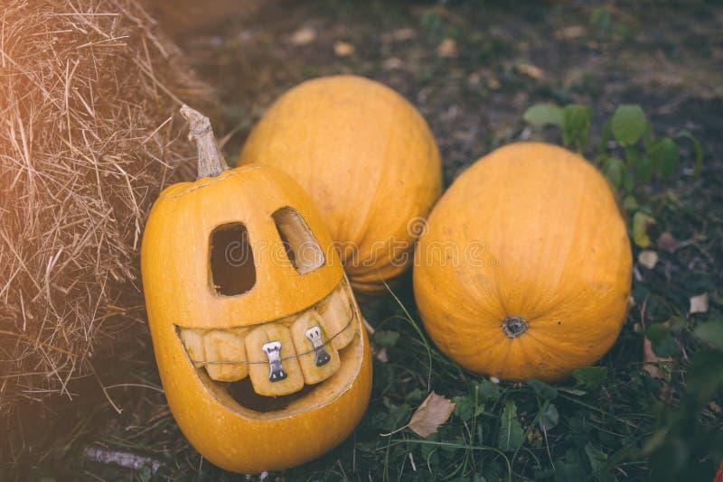 Calabazas del fantasma en Halloween ead Jack en un fondo del otoño Decoraciones al aire libre del día de fiesta imágenes de archivo libres de regalías