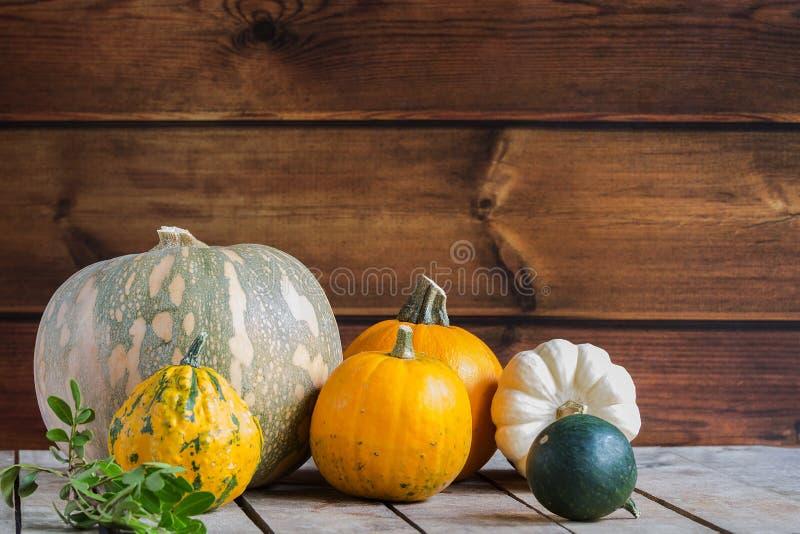 Calabazas en el fondo de madera, espacio de la copia para el texto Día de Halloween, de la acción de gracias u otoñal estacional  foto de archivo