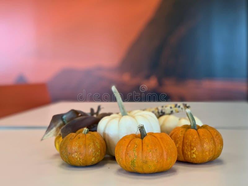 Calabazas en una tabla del café lista para el acontecimiento de Halloween foto de archivo