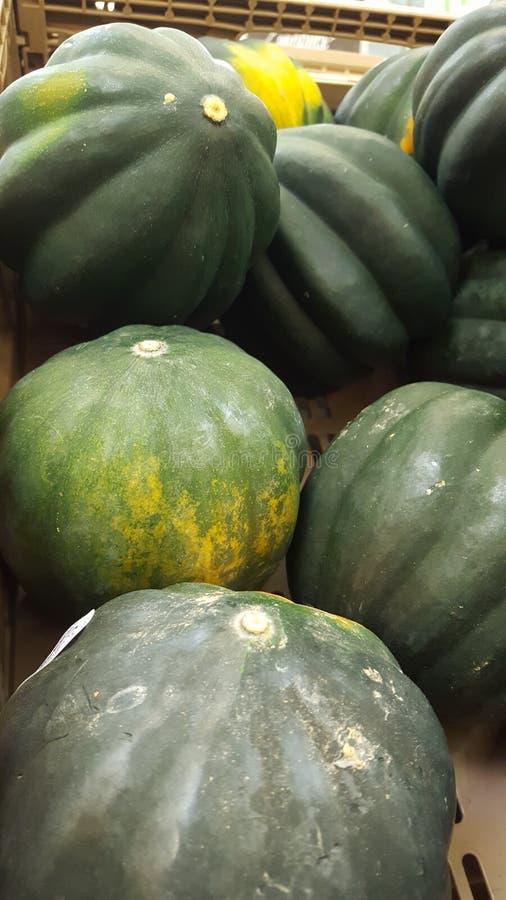 Download Calabazas verde y amarillo imagen de archivo. Imagen de océano - 100527119