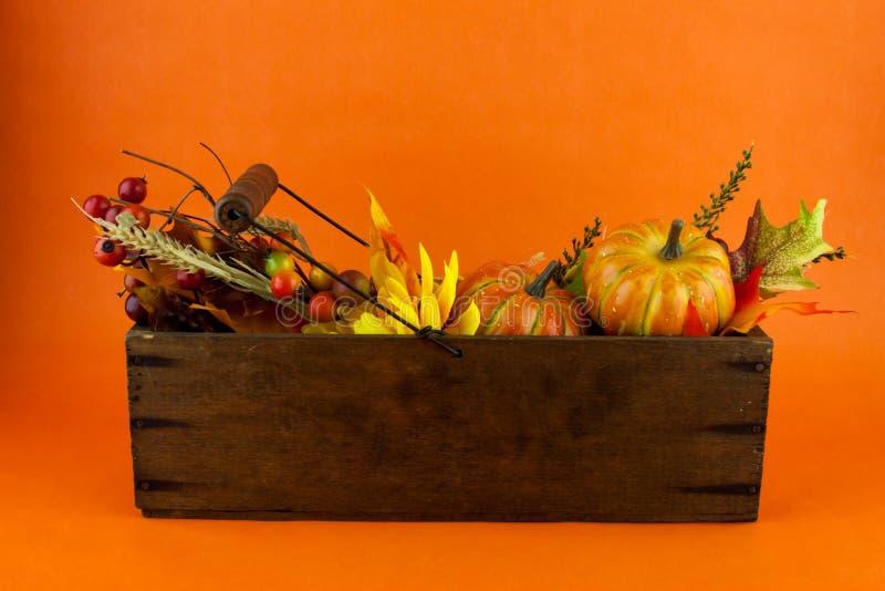 Calabazas y Autumn Leaves en una caja del queso imágenes de archivo libres de regalías