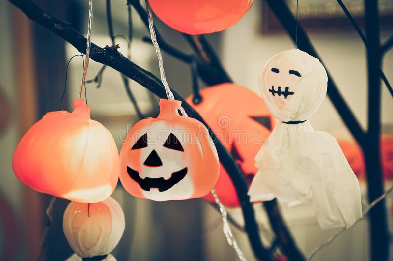 Calabazas y fantasma de Halloween foto de archivo libre de regalías