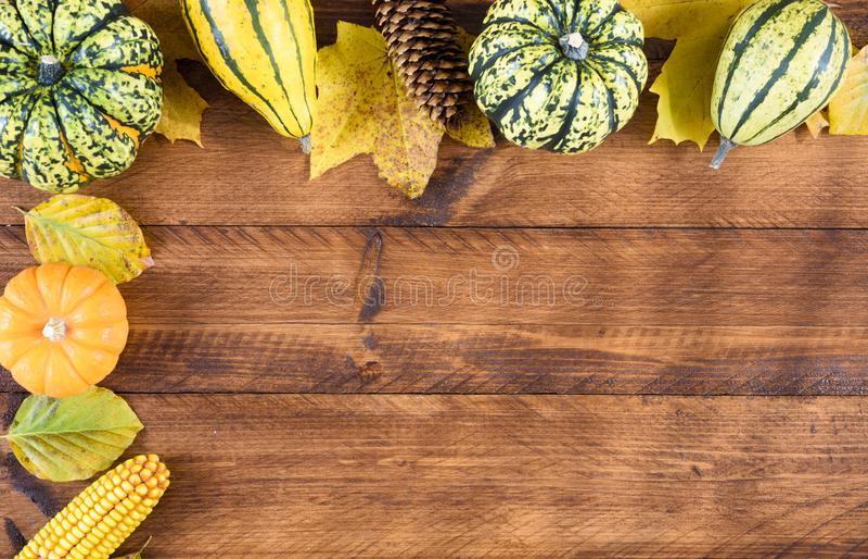 Calabazas y hojas en la acción de gracias en tablón de madera fotos de archivo