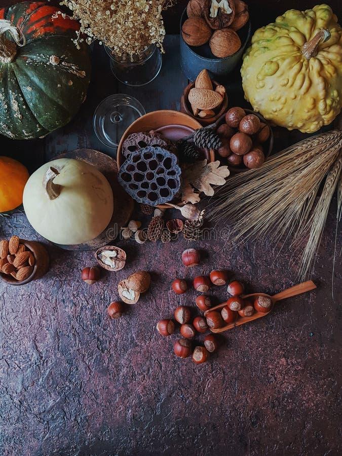 Calabazas y nueces decorativas coloridas en el fondo de piedra oscuro, fest del otoño, tiempo de cosecha, mercado de la calabaza  fotos de archivo