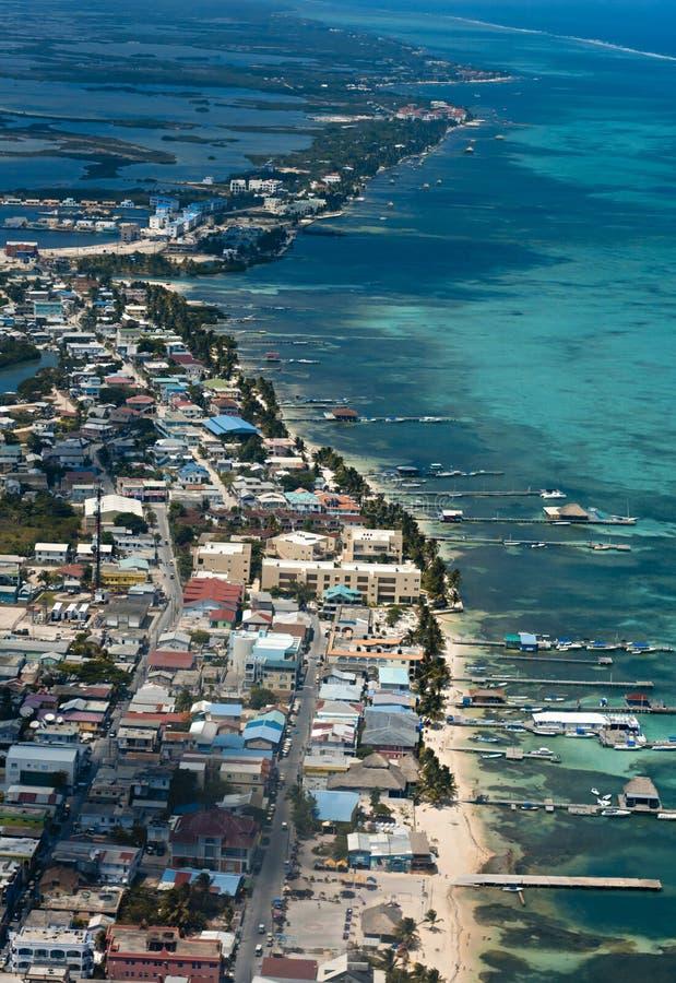 Calafate de Caye imágenes de archivo libres de regalías