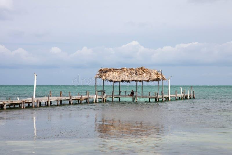 Calafate de Caye, Belice fotos de archivo