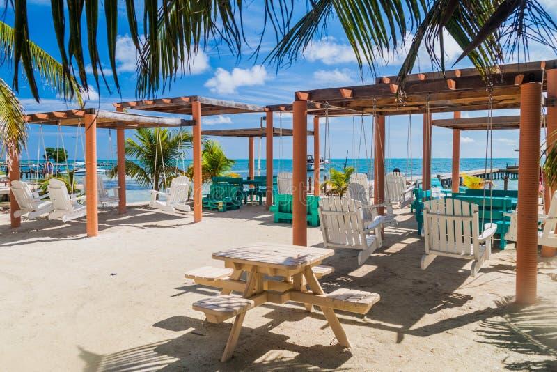 CALAFATE DE CAYE, BELIZE - 2 DE MARÇO DE 2016: Cadeiras do balanço em uma praia na vila do calafate de Caye, Beli imagem de stock royalty free