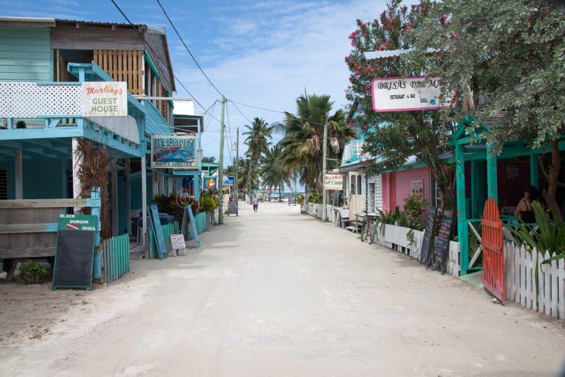 Calafato di Caye, Belize fotografia stock libera da diritti