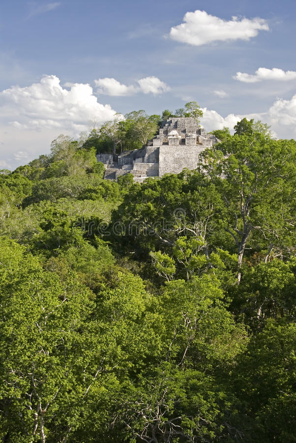 Calakmul royalty free stock images