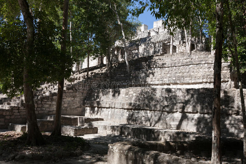 Calakmul - ancient mayan city in Mexico royalty free stock images
