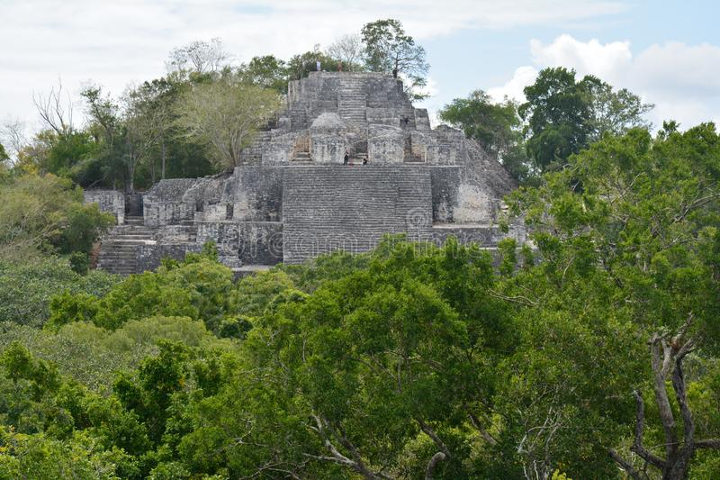 Calakmul Archaeological Site in Campeche Mexico. The beautiful and lost maya city of Calakmul hidden in the jungle of southern Mexico in the province of Campeche stock images