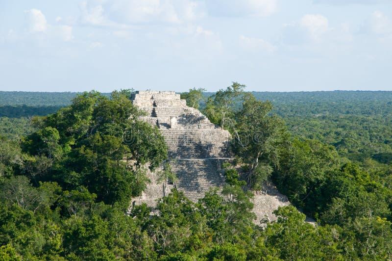 Calakmul - estructura I royalty-vrije stock foto