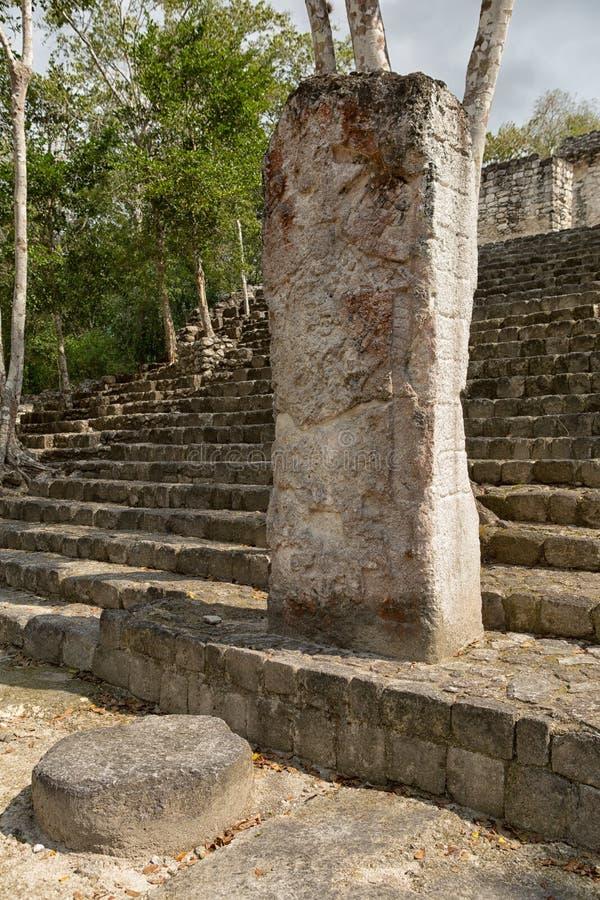 Calakmul maya ruïneert Mexico stock foto's