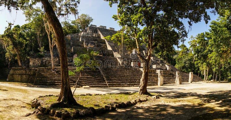 Calakmul maya temple in the Yucatan, Mexico. royalty free stock photography