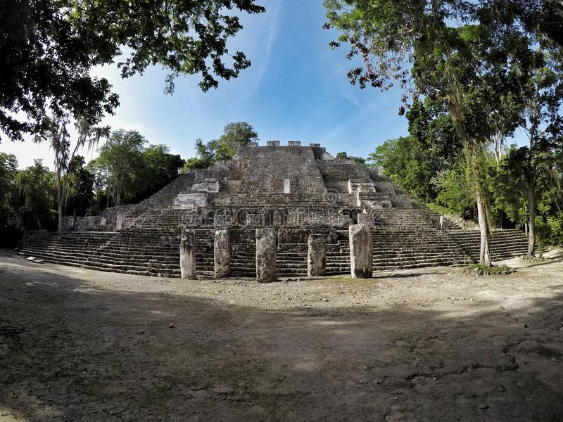 Calakmul pyramid. Deep in the mexican jungle lays a forgotten pyramid called calakmul royalty free stock photo