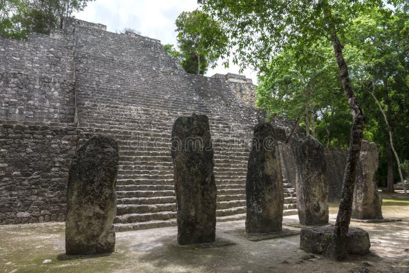 Calakmul pyramidstruktur VII royaltyfria bilder
