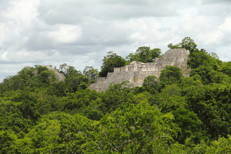 Calakmul V stock photo