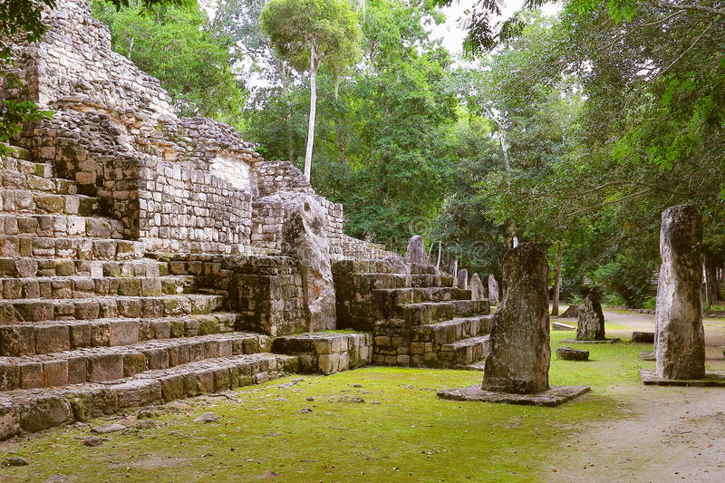 Calakmul XX royalty free stock photo