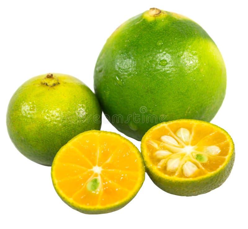 Calamansi och limefrukt III arkivbild