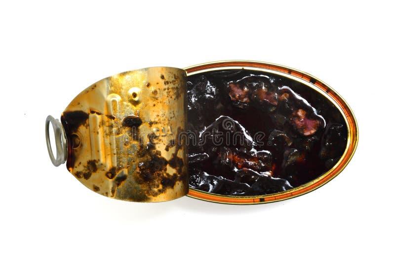 Calamar com a tinta isolada sobre foto de stock royalty free