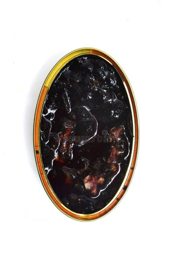 Calamar com a tinta isolada, vista de cima de imagem de stock royalty free