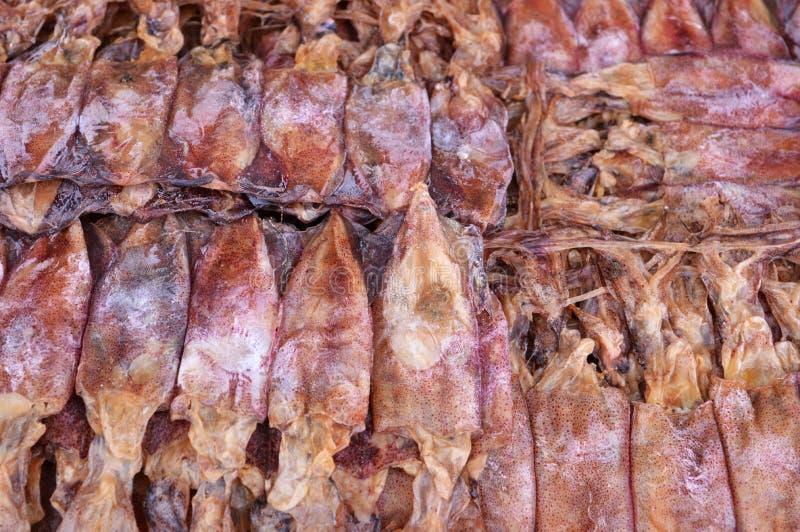 Download Calamar secado imagen de archivo. Imagen de cocina, local - 42429635