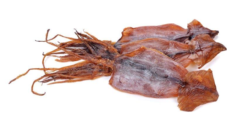 Calamar secado imagem de stock