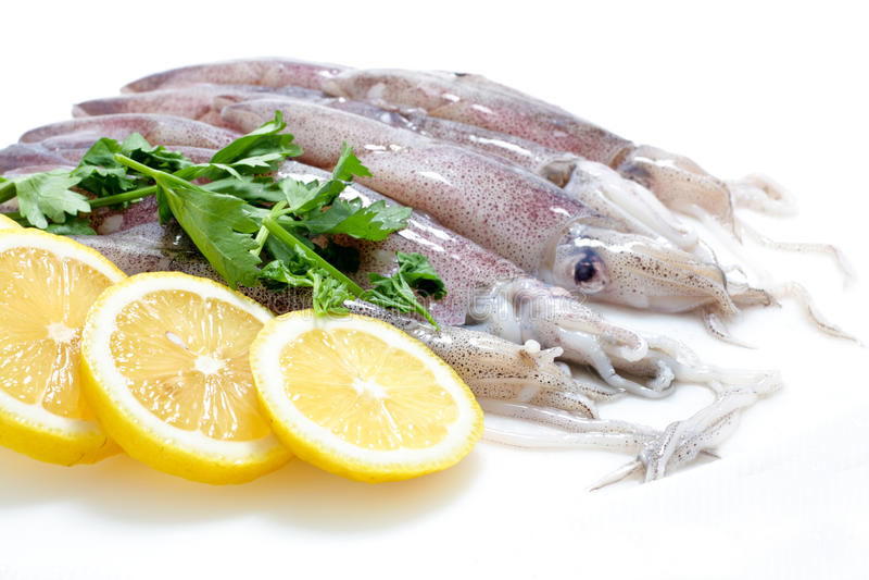 Calamari frais avec le citron photos stock