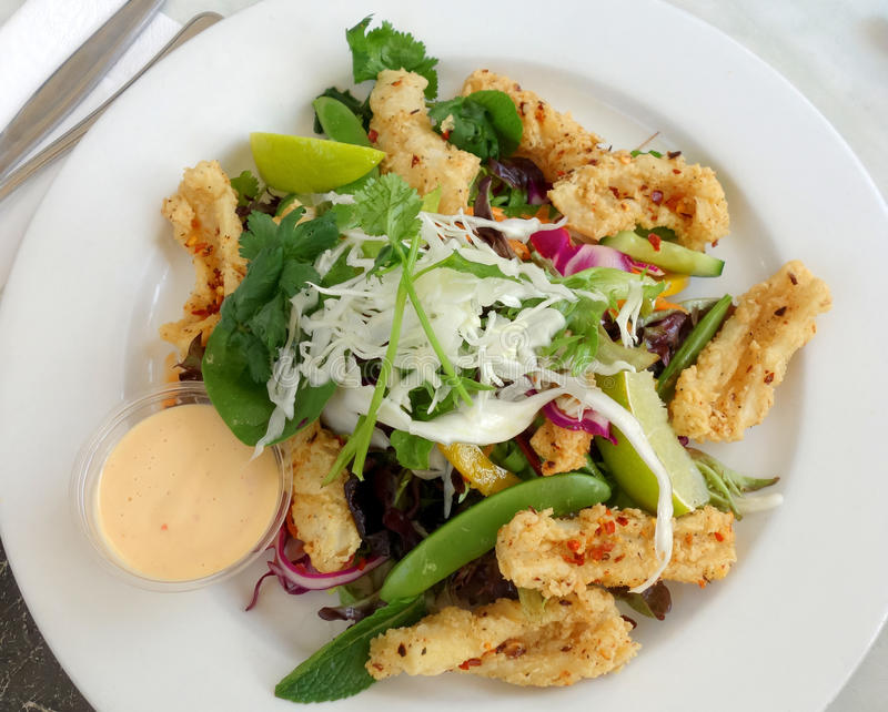 Calamari salad royalty free stock photo