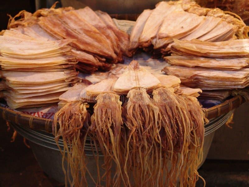 Calamaro tailandese fotografia stock libera da diritti