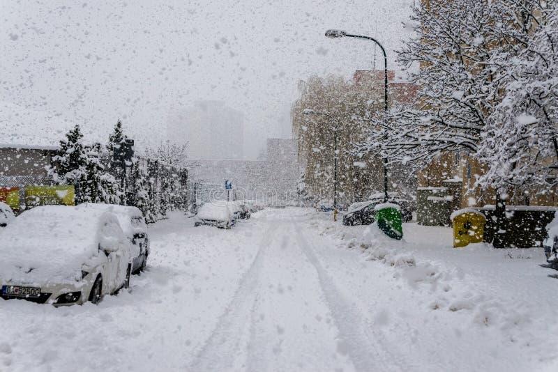 A calamidade da neve em Bratislava Eslováquia, neve enorme lasca-se 30 de janeiro de 2015 foto de stock