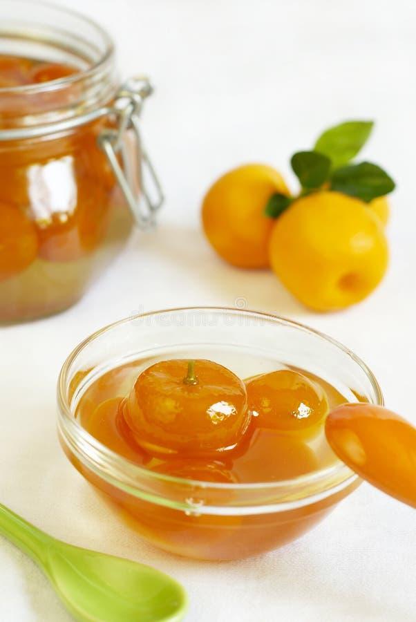 Calamondin e atolamento do kumquat imagem de stock