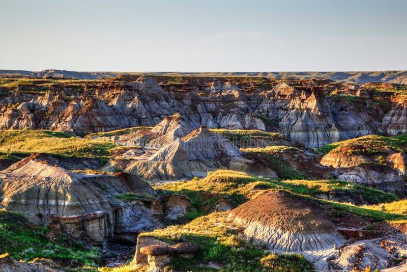 Calanchi del parco provinciale del dinosauro in Alberta, Canada immagini stock libere da diritti