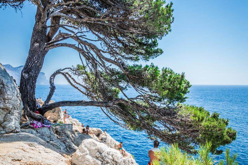 Calanques near Cassis in a summer day. Cote d`Azur French Riviera is situated in the southern eastern part of the mediterranean coast of France and it is famous royalty free stock photo