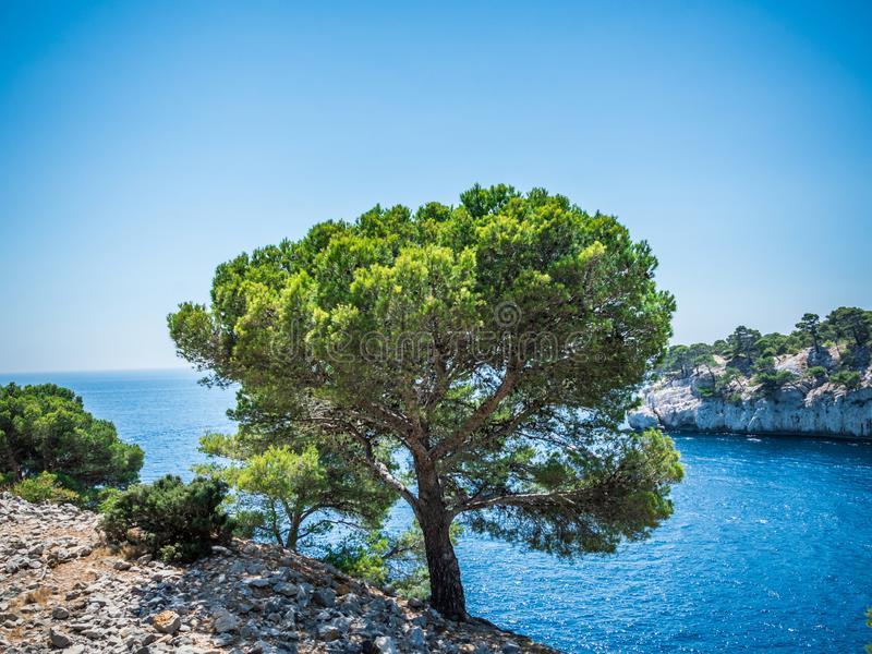 Calanques near Cassis in a summer day. Cote d`Azur French Riviera is situated in the southern eastern part of the mediterranean coast of France and it is famous royalty free stock photography