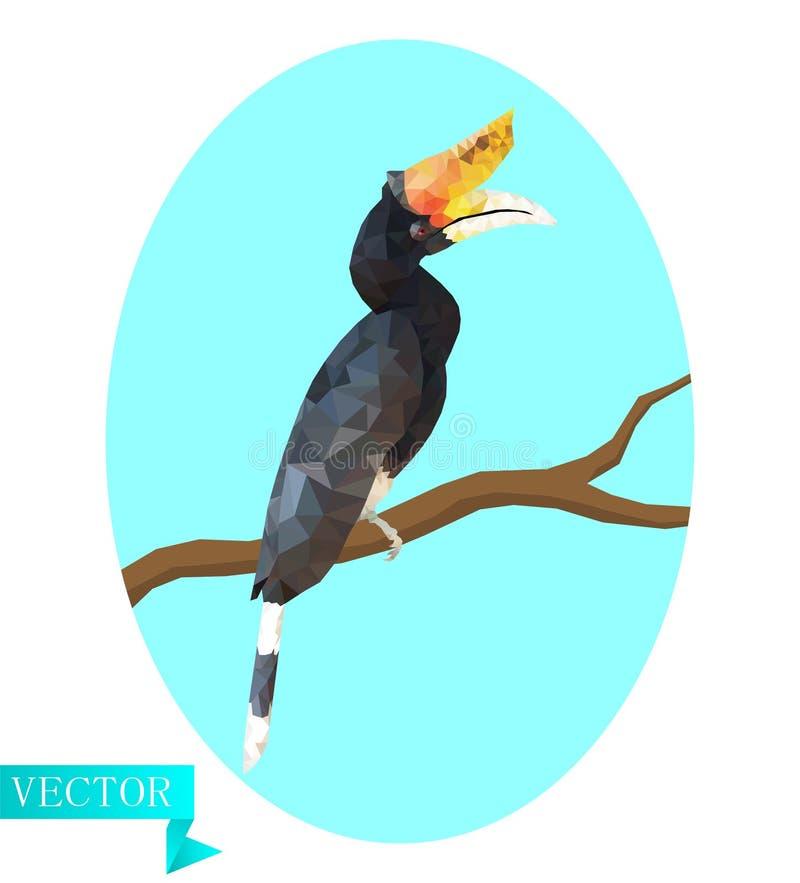 Calao del Hornbill del polígono, bucerotidae El sentarse en una rama en un fondo del óvalo azul claro ilustración del vector