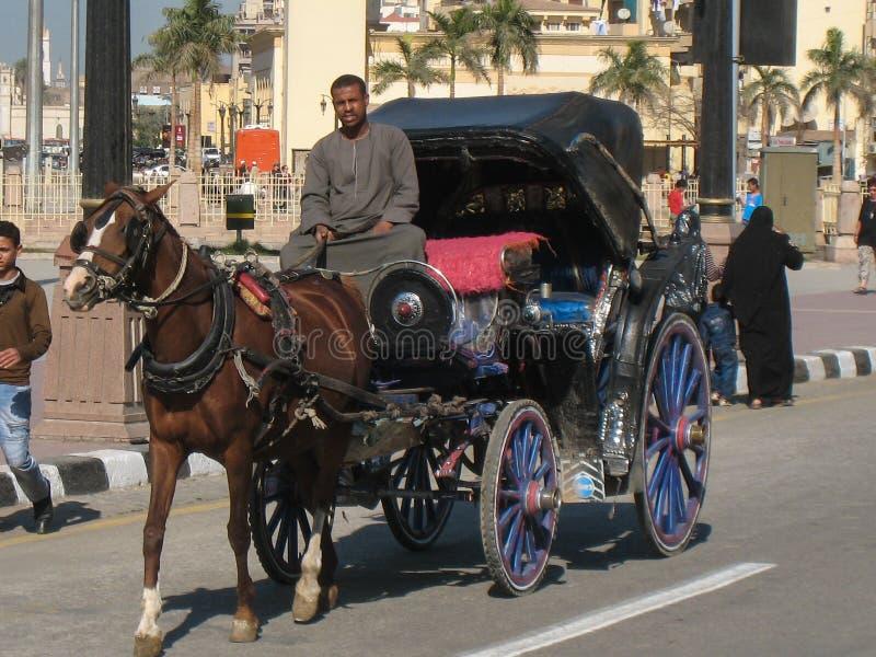 Calash driver. Luxor. Egypt royalty free stock photo