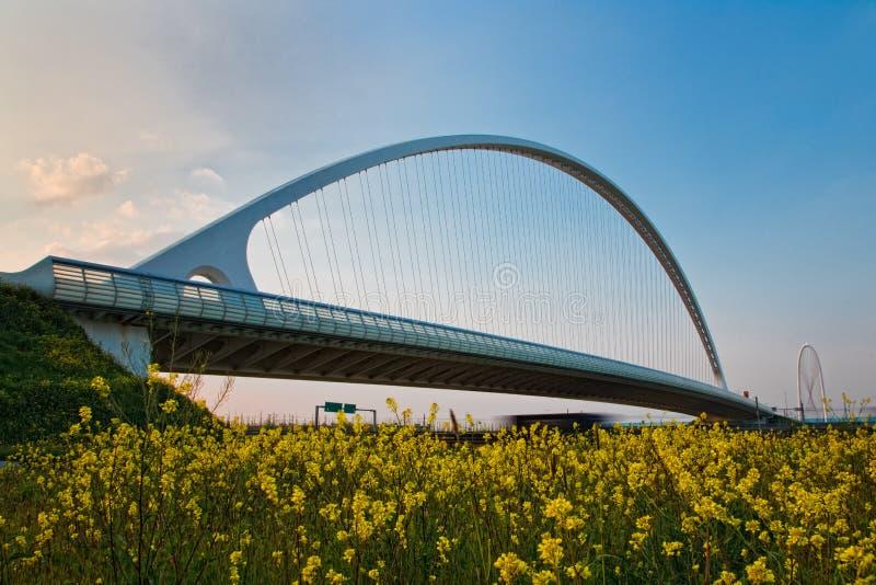 Calatrava Bridge. In Reggio Emilia stock photos