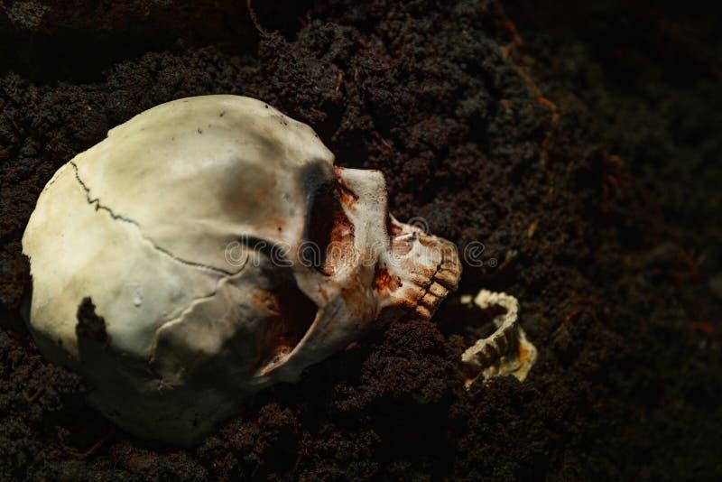 Calavera de un hombre muerto en el suelo imagenes de archivo