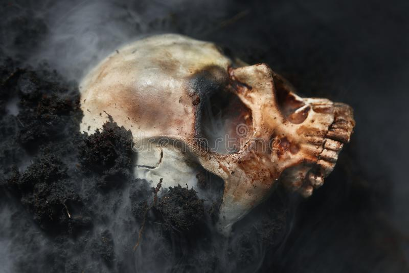 Calavera de un hombre muerto en el suelo imagen de archivo libre de regalías