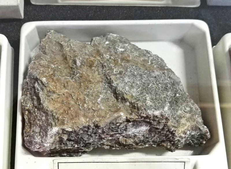 Calcare fossilifero fotografia stock