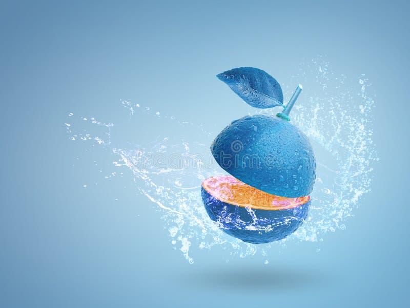 Calce blu fresca isolata su fondo blu fotografie stock libere da diritti