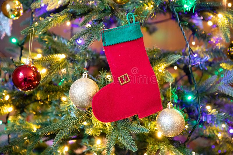 Calcetín rojo y verde en el primer del árbol de navidad fotos de archivo